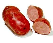Potatoes_solanum_tuberosum_all_red-1.full