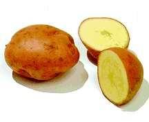 Potatoes_solanum_tuberosum_desiree-1.full
