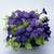 Petunias: Petunia Grandiflora, 'Ultra™ Blue'