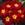 Primulas_primula_acaulis_primera_tm_scarlet-1.sprite