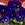Violas: Viola Cornuta, 'Penny™ Deep Blue'