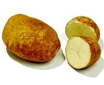 Potatoes_solanum_tuberosum_nooksack-1.full