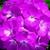 Geraniums_pelargonium_hortorum_ringo_2000_tm_deep_rose-1.small