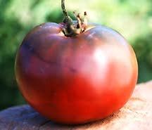 Tomatoes_lycopersicon_x_cherokee_purple-1.full