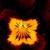 Violas: Viola Cornuta, 'Rocky™ Red W/Yellow Face'