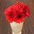 Daisies_gerbera_jamesonii_jaguar_tm_scarlet_shade_dark_center-2.small
