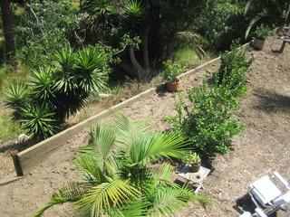 veggie garden part/begining stages