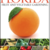Florida-vegetable-gardening.small