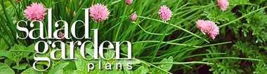 Salad_garden_banner.detail