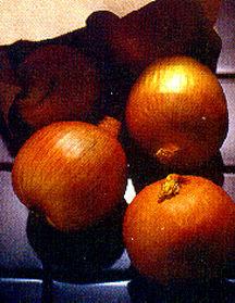 Onion, Long Day 'Sweet Sandwich'