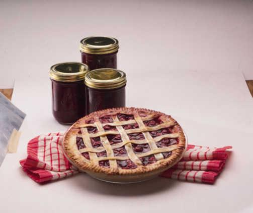 Cherry_prunus_avium_starkspur_montmorency_pie-1.full