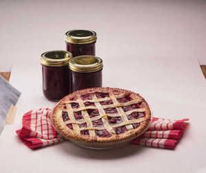 Cherry Tree, Starkspur® Montmorency Pie semi-dwarf