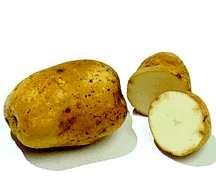 Potato, Krantz