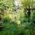 Garden_woman_3.small