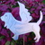 Angel_bassett_hound_7.5t_x_8w.small