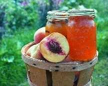 Peach Tree, Standard 'Carolina Belle'
