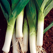 Leeks_scotland.full