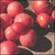 Tomato_clear_pink_slicer.small