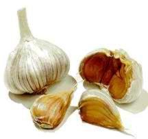 Garlic, 'Brown Rose'