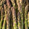 Asparagus_uc157.thumb