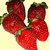 Strawberry_camarosa.small