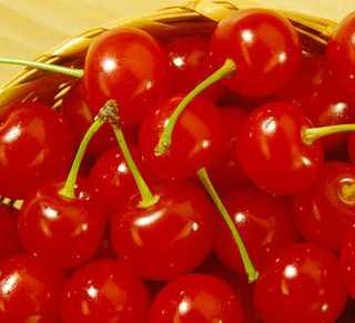 Cherry Tree, Bing