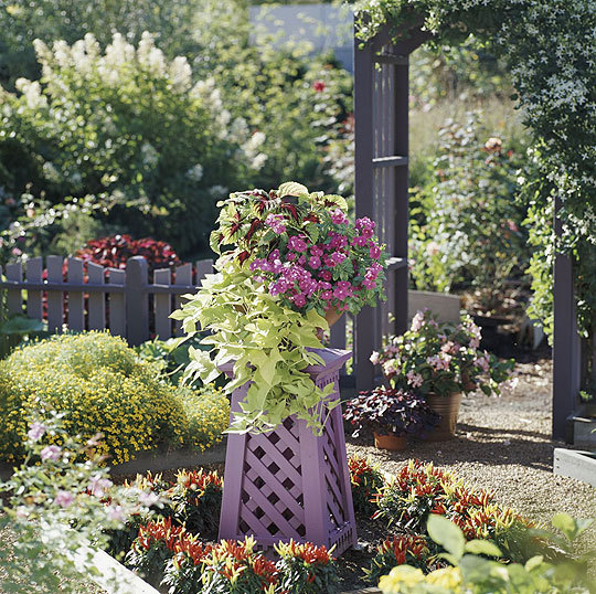 Container-gardening_lg1.full