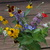 Garden_bouquet.small