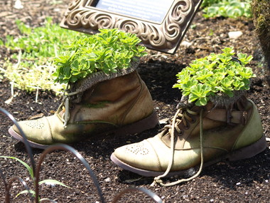 Planted_shoes.detail