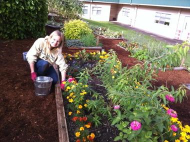 School Garden Ideas awesome school garden Mercer Island School Gardening Curriculum