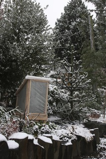 snow falls in november on the newly installed banana houses!