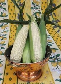 Corn-sugar3.full
