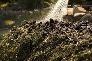 making biodynamic compost