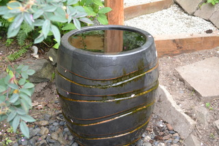 Combination Water Feature and Dog Waterer