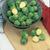 Brussels Sprouts: Brassica oleracea, 'Long Island'