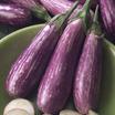 Eggplant 'Fairy Tale'