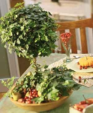 Tabletop_topiary.full