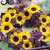 Sunflowers_helianthus_annuus_f1_sunrich_lemon_summer-1.small