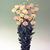 Lisianthus_eustoma_grandiflora_lisianthus_f1_vulcan_champagne.small