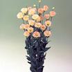 Lisianthus_eustoma_grandiflora_lisianthus_f1_vulcan_champagne.thumb