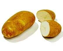 Potato, Norgold 'M'