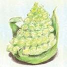 Romanesco-italia-broccoli.full