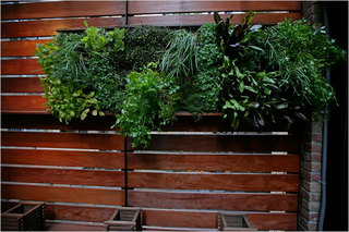 Green_vegetable_garden_wall.large