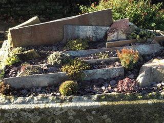 Mini Garden 3