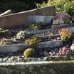 Minature_garden_3.thumb