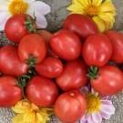 Egg-tomato.full