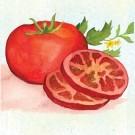 Moskvich-tomato.full