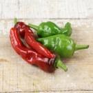 Melrose-pepper.full