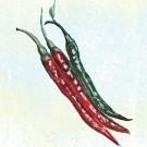 Sigaretta-de-bergamo-pepper.full