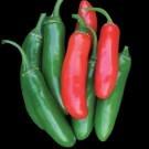 Serrano-tampequino-pepper.full